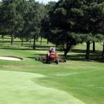 Mantención áreas verdes, control de plagas