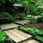 construccion y diseno de jardines 1